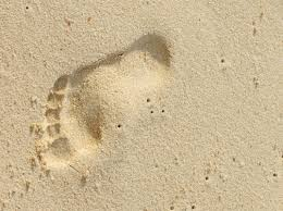 "photo source: google ""Bare footprint"""
