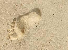 "photo source: google ""Bare footprint"""
