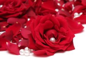 rosepetals-soulofagypsy